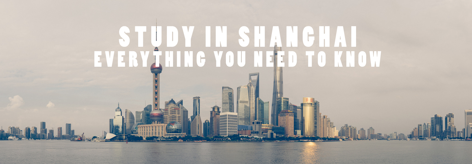 [INFOGRAPHIC] Study in Shanghai: everything you need to know